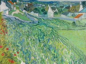 Vineyards at Auvers, June 1890 by Vincent van Gogh