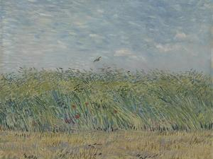 Wheatfield with Partridge, 1887 by Vincent van Gogh
