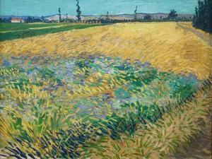 Wheatfield by Vincent van Gogh