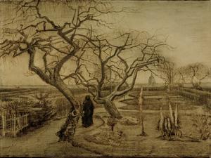 Winter Garden, March 1884 by Vincent van Gogh