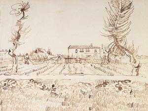 Working the Fields at Arles; Laboureur Dans Les Champs a Arles, 1888 by Vincent van Gogh