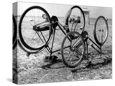 Bikes During Sunday Trip to the Sea, Versilia
