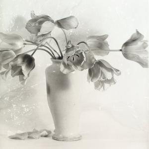 Vase with Tulips by Vincenzo Balocchi