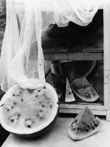 Watermelon by Vincenzo Balocchi