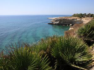 Coast Near Cassibile, Siracusa Province, Sicily, Italy, Mediterranean, Europe by Vincenzo Lombardo