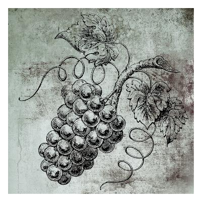 Vine Grapes-Victoria Brown-Art Print