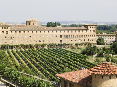 Vineyard and Monastery, Olite, Navarra, Euskadi, Spain-Christian Kober-Photographic Print