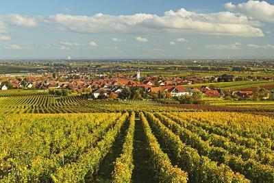 Vineyard Landscape and Maikammer Village, German Wine Route, Rhineland-Palatinate, Germany, Europe-Jochen Schlenker-Photographic Print