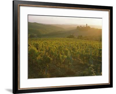 Vineyards and Ancient Monastery, Badia a Passignano, Greve, Chianti Classico, Tuscany, Italy-Michael Newton-Framed Photographic Print