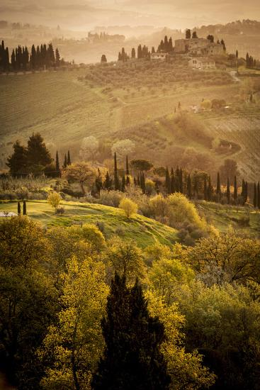 Vineyards and Rolling Hills Near San Gimignano at Dawn-Tino Soriano-Photographic Print