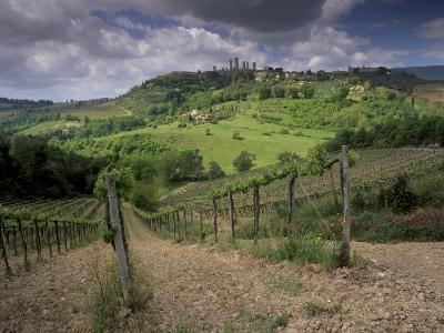 Vineyards and the Medivel Town of San Gimignano Delle Belle Torri, Tuscany, Italy-Patrick Dieudonne-Photographic Print