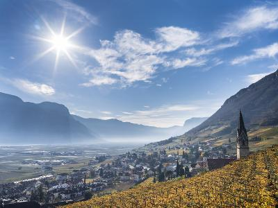 Vineyards and the Valley of the River Etsch. South Tyrol, Italy-Martin Zwick-Photographic Print