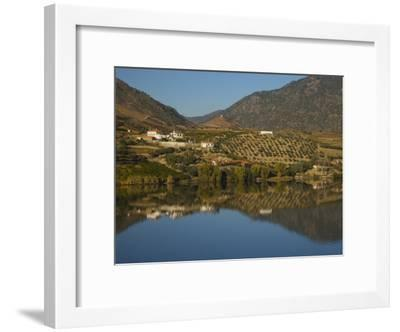 Vineyards and Wineries Reflected in the Douro River-Michael Melford-Framed Photographic Print