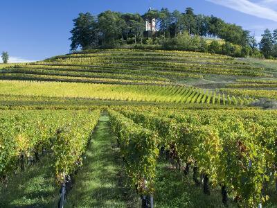 Vineyards, St. Emilion, Gironde, France, Europe-Robert Cundy-Photographic Print