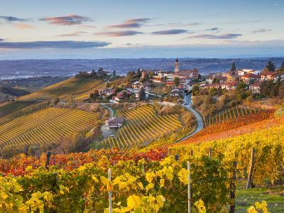 Vineyards, Treiso, Nr Alba, Langhe, Piedmont (or Piemonte or Piedmonte), Italy-Peter Adams-Photographic Print