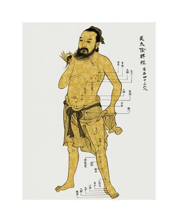 https://imgc.artprintimages.com/img/print/vintage-acupunture_u-l-f8iv6b0.jpg?p=0