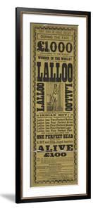 Lalloo by Vintage Apple Collection