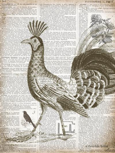 Vintage Bird II-Gwendolyn Babbitt-Art Print