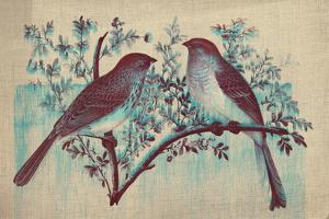 Vintage Birds (Blue)