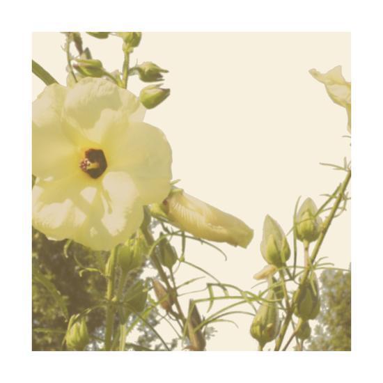 Vintage Bloom III-Megan Meagher-Art Print