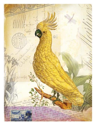 Vintage Botanical Cockatoo Print-Bessie Pease Gutmann-Giclee Print