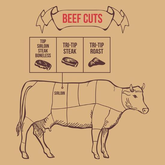 Vintage Butcher Cuts of Beef Scheme Vector Illustration- dimair-Art Print