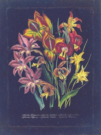 Vintage Dark Floral on Indigo II--Art Print