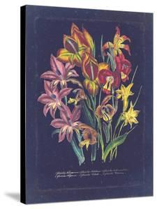Vintage Dark Floral on Indigo II