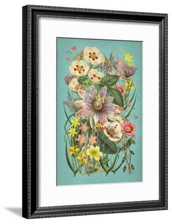 Vintage Flowers on Teal--Framed Art Print