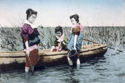 Vintage French Postcard, C1900--Giclee Print