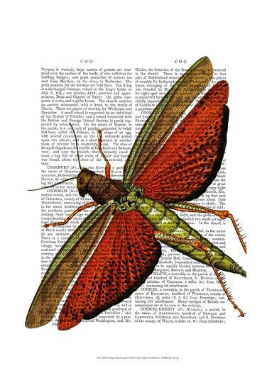 Vintage Grasshopper-Fab Funky-Art Print