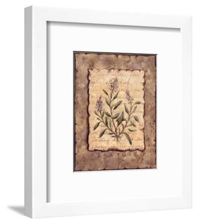 Vintage Herbs-Sage-Constance Lael-Framed Art Print
