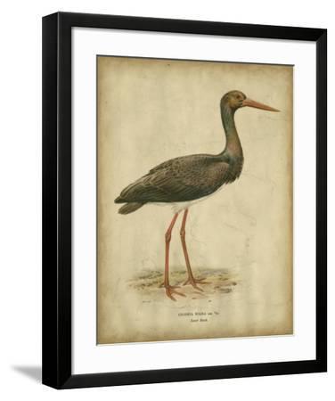 Vintage Heron I- Von Wright-Framed Art Print