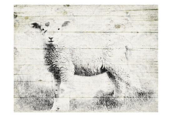Vintage Lamb-Jace Grey-Art Print