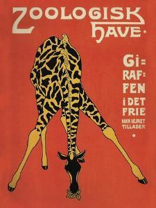 Copenhagen Zoo by Vintage Lavoie