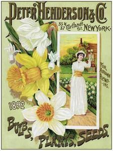 Seeds 0100 by Vintage Lavoie