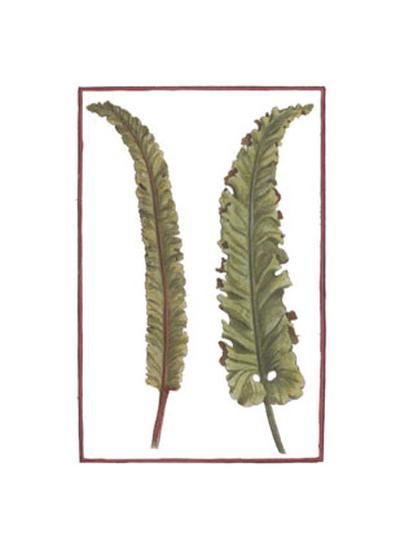 Vintage Leaf I--Art Print