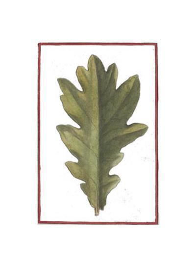Vintage Leaf IV--Art Print