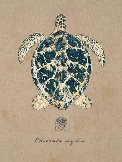 Vintage Linen Tortoise-Regina-Andrew Design-Art Print