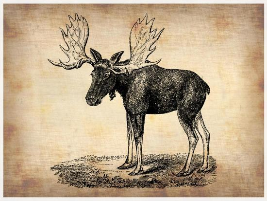 Vintage Moose-NaxArt-Premium Giclee Print