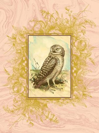 https://imgc.artprintimages.com/img/print/vintage-owl_u-l-q1g8lz00.jpg?p=0