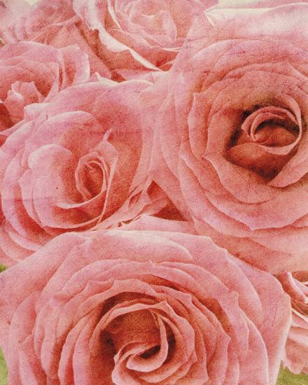 Vintage Romance II-Collezione Botanica-Art Print