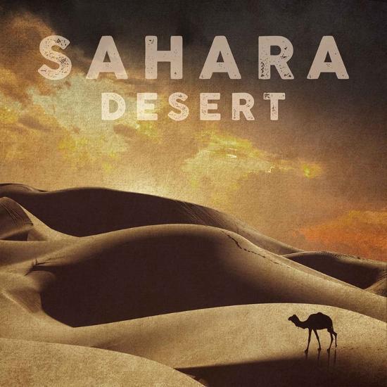 Vintage Sahara Desert with Sand Dunes and Camel, Africa-Take Me Away-Art Print