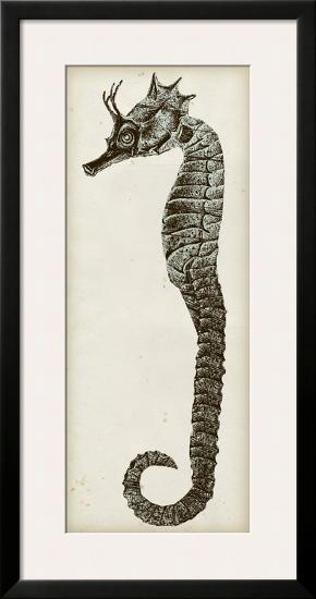 Vintage Seahorse I--Framed Art Print
