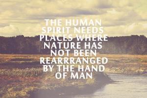 The Human Spirit by Vintage Skies