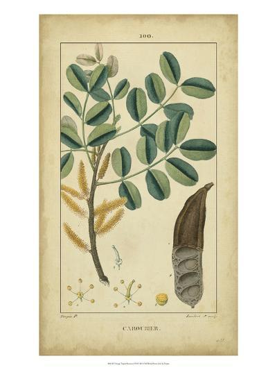 Vintage Turpin Botanical VII-Turpin-Art Print