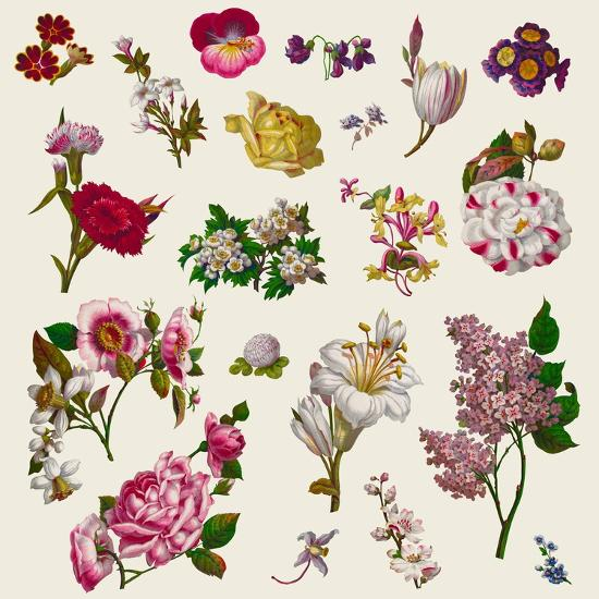 Vintage Victorian Flowers Clip Art-Karimala-Art Print