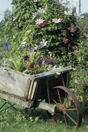 https://imgc.artprintimages.com/img/print/vintage-wheelbarrow-with-flowers_u-l-q10p6fq0.jpg?p=0