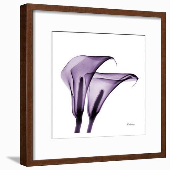 Violet Calla Twins II-Albert Koetsier-Framed Art Print
