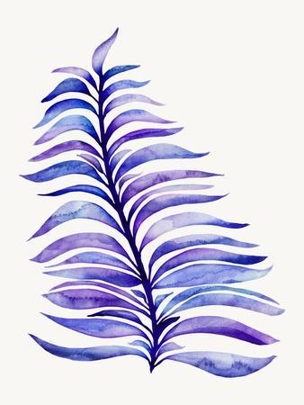 https://imgc.artprintimages.com/img/print/violet-royal-fern_u-l-f9i6om0.jpg?p=0